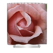 A Close View Of The Top Of A Pink Rose Shower Curtain