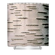 A Close View Of White Birch Bark Shower Curtain