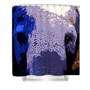 A Colorful Elephant Work Number 1 Shower Curtain