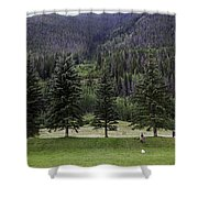 A Day At The Park In Vail Shower Curtain