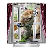 A Deer Enters The House Window. Shower Curtain