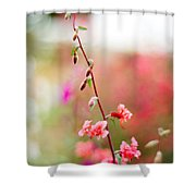 A Delicate Rise Shower Curtain