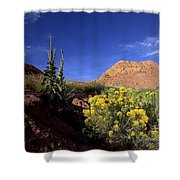 A Desert Landscape With Rock Formations Shower Curtain