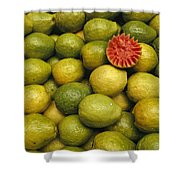 A Display Of Guavas In An Open Air Shower Curtain