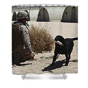 A Dog Handler Calls Over A Black Shower Curtain by Stocktrek Images