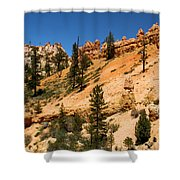 A Dragon Over Water Canyon Shower Curtain