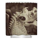 A Dragon's Tale - Series 2 Shower Curtain