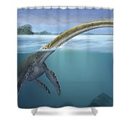 A Elasmosaurus Platyurus Swims Freely Shower Curtain