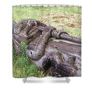 A Fallen Wooden Totem Pole Lies Shower Curtain