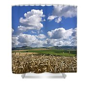 A Field Of Barley . Auvergne. France Shower Curtain