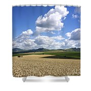 A Field Of Wheat Auvergne. France Shower Curtain