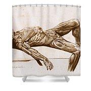 A Flayed Cadaver Shower Curtain