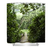 A Flooded Path At Manoa Falls Shower Curtain