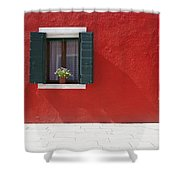 A Flower Pot Sits In A Window With Shower Curtain