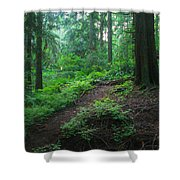 A Forest Green Shower Curtain