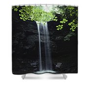 A Gentle Woodland Waterfall With Maple Shower Curtain