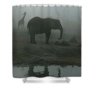 A Giraffe And Elephant Live In The Same Shower Curtain