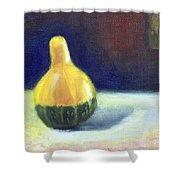 A Gourd  Shower Curtain