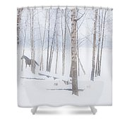 A Horse Stands Beside A Forest Of Bare Shower Curtain