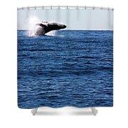 A Huge Splash Shower Curtain