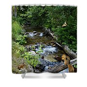 A Lazy Summer Day On Mt Spokane Shower Curtain