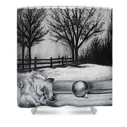 A Lazy Winter Day Shower Curtain