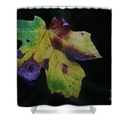 A Leaf Left Black And Blue  Shower Curtain