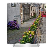 A Line Of Flowers In A French Village Shower Curtain