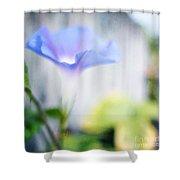 A Little Blue Shower Curtain by Darren Fisher