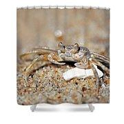 A Little Crabby Shower Curtain