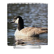 A Long Day Shower Curtain