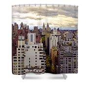 A Manhattan View Shower Curtain