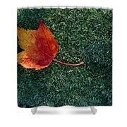 A Maple Leaf Lies On Emerald Moss Shower Curtain