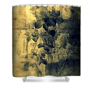 A Medley Of Orchids Shower Curtain
