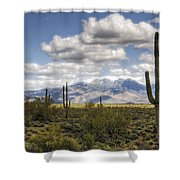 A Morning In The Desert  Shower Curtain