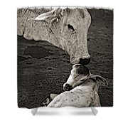 A Mother's Love Monochrome Shower Curtain