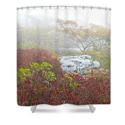 A Natural Garden At Dolly Sods Wilderness Area Shower Curtain