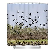 A Numbers Game V2 Shower Curtain