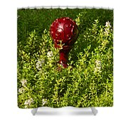 A Orb In Thyme Shower Curtain