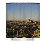 A Panoramic View Of A Vineyard Shower Curtain