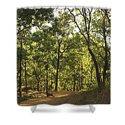 A Path Through A Sparse Forest And Trees Shower Curtain