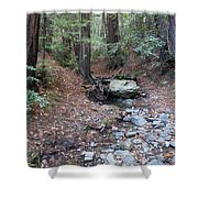 A Peaceful Redwood Creek On Mt Tamalpais Shower Curtain