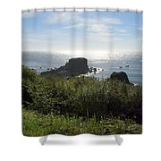 A Perfect View Shower Curtain