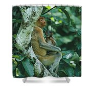 A Proboscis Monkey Shower Curtain