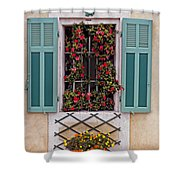 A Provence Window Shower Curtain
