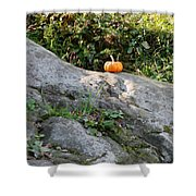 A Pumpkin In Central Park Shower Curtain