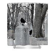 A Quiet Winter Day At The Graveyard Shower Curtain