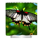 A Real Beauty Butterfly Shower Curtain