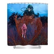 A Red Sea Fan With Sponge Colored Clam Shower Curtain