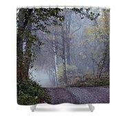 A Road Through A Misty Wood Shower Curtain